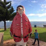 "The big ""Santa"" Penguin"