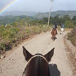 Riding to the rainbow