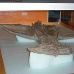 Royal Tyrrell Museum of Palaeontology Foto