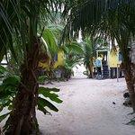 Colinda Cabanas Foto