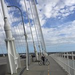 Biking up Arthur Ravenel Jr. Bridge January 2017