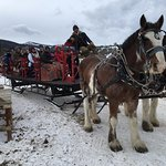 Hot cocoa sleigh ride with Sombrero Stables, on-site.