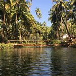 The fresh water lagoon
