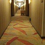5th floor hallway.