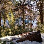 Photo of Huerquehue National Park