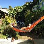 Foto de Iguana Hostel