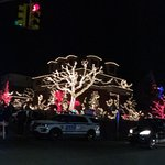 Photo of Dyker Heights
