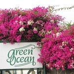 Green Ocean Foto