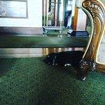 Hotel kitties.....