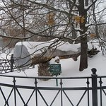 По преданию, этот дуб посадил Миша Лермонтов