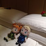 Roses on our pillows (Anna and Elsa belongs to our daughters)