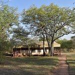Sanctuary Kusini, Serengeti Foto