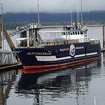 Bering sea crab fisherman tour
