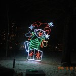 zoo lights 7