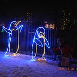zoo lights 10