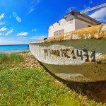 Mermaid Boat Trips Foto