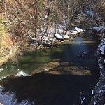 creek downstream from waterfall