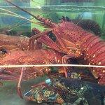 Foto de Treasure Lake Seafood Restaurant