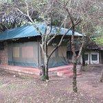 Photo of Miti Mingi Eco Camp