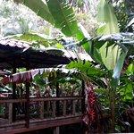 Aninga Lodge Foto