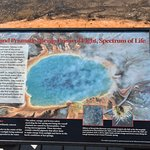 Photo of Midway Geyser Basin