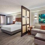 ADA King Guestroom Overview