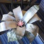 Bromelia fasciada y su flor