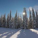 Photo de Schweitzer Mountain Resort Lodging