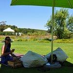 Lovely spot for a picnic