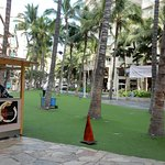 Yard House Palm View