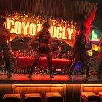 Coyote ugly saloon roppogi🔥