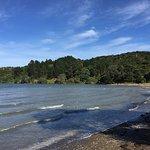Photo de Shelly Beach Top 10 Holiday Park