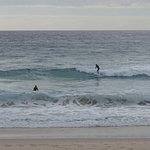 Locals swimming and surfing..early birds