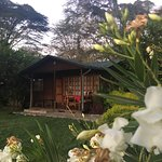 Photo of Wileli House