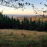 Silvan Forest Biking Trail
