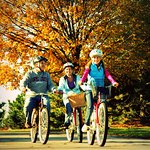 Fun for all ages!  Bike rental available!