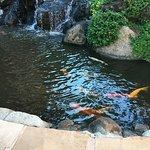 Kahana Falls Foto
