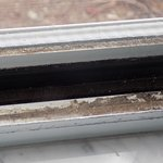 Mold and dirt in the window sill.