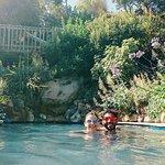 Plunge pool in lush garden