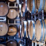 Our urban winery and tasting room is lined in hundreds of barrels full of wine!