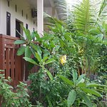 Photo of Belong Bunter Homestay