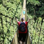 Rope bridge. Not for the faint of heart. The kids loved it. The adults were a little apprehensiv