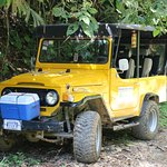 1972 Toyota Land Cruiser. Cooler full of pineapple and bottled water
