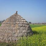 Village farms visit