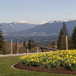 Foto di Burnaby Mountain Park