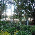 Zdjęcie Nature Hunt Eco Camp, Kaziranga National Park