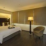 Signature / Signature Suite Bed