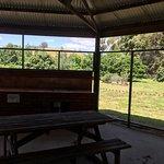 The Tasmanian Arboretum Foto