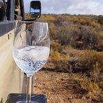 Sundowner auf Safari
