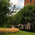 Photo of Embassy Suites by Hilton Dallas Love Field